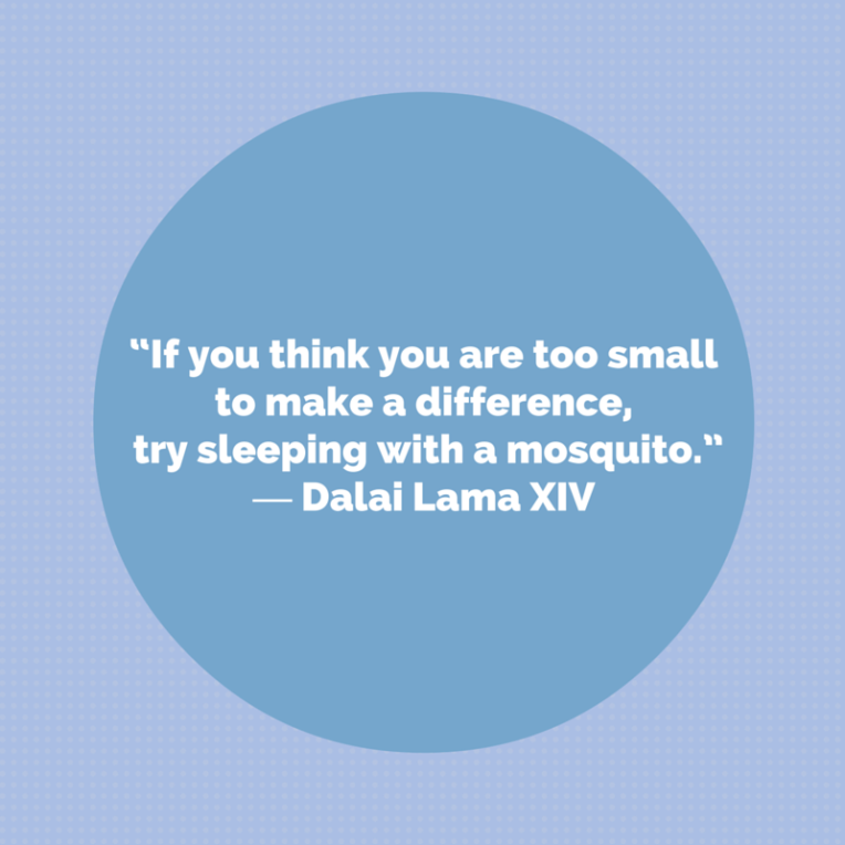 """If you think you are too small to make a difference, try sleeping with a mosquito."" ― Dalai Lama XIV (1)"
