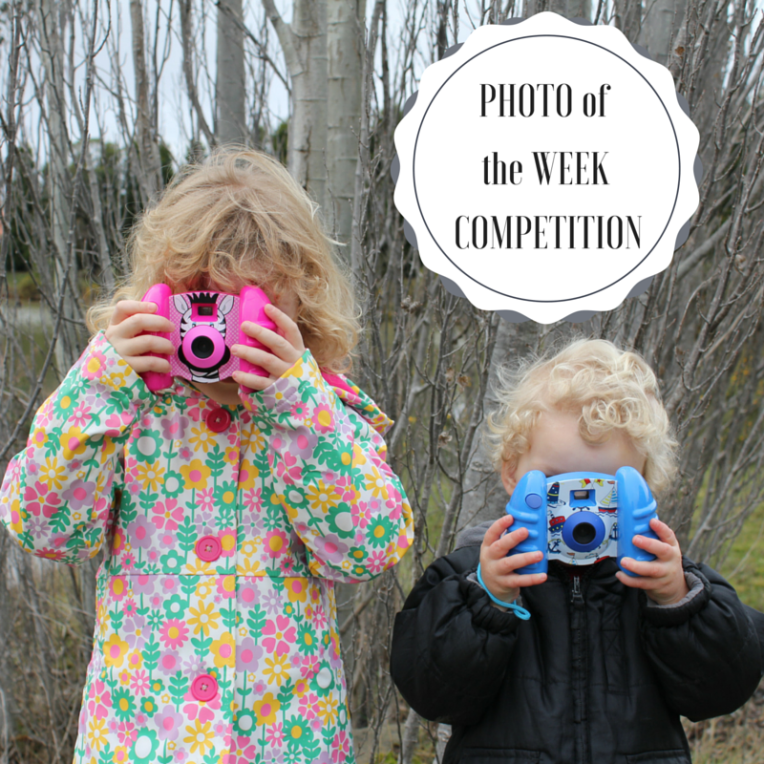 Photo of the week comp.png