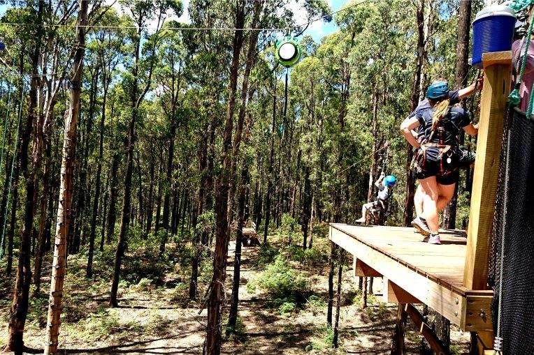 Kinglake Forest Adventures 12.jpg