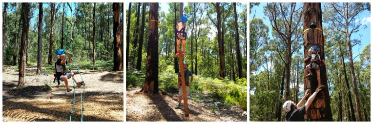 Kinglake Forest Adventures 15