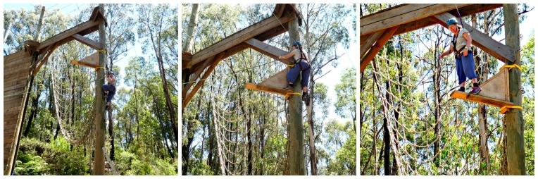 Kinglake Forest Adventures 24